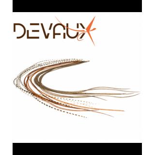 LANCETTE DEVAUX XS TOP QUALITE