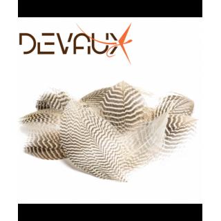 PLUMES DEVAUX SARCELLE