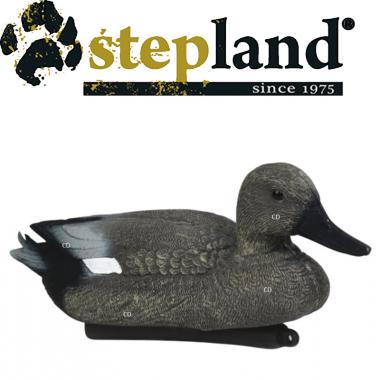 APPELANTS STEPLAND CHIPEAU...