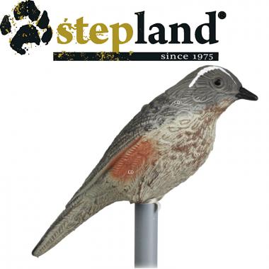 APPELANTS STEPLAND GRIVE...