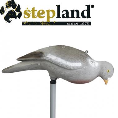 APPELANTS STEPLAND PIGEON...