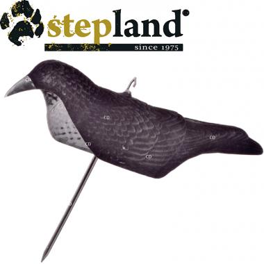 APPELANTS STEPLAND COQUE...