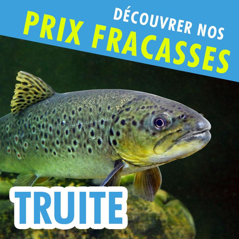 Prix Fracassés TRUITE