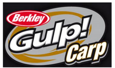 GULP CARP
