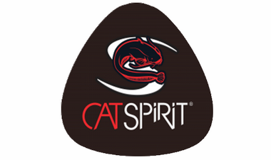 CAT SPIRIT