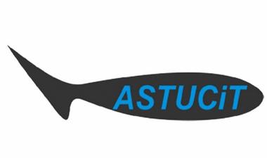 Astucit